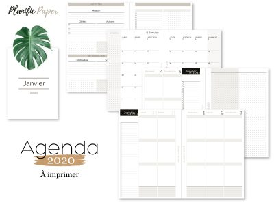 Agenda-Planner 2020 français Semainier sur 4 pages - 3 blocs zones - objectifs-mois-semaines-weekend - Planific paper A53Z4P